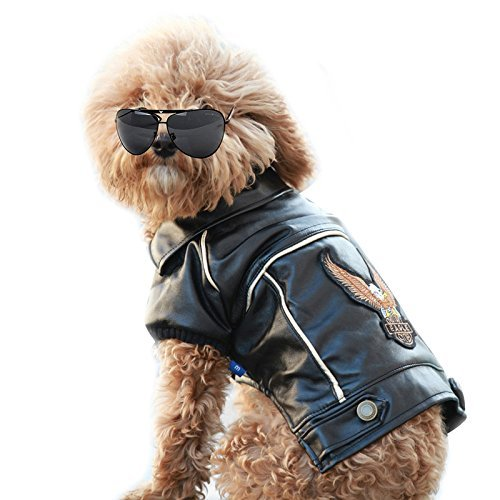 Cuteboom Dog Winter Coat Pu Leather Motorcycle Jacket for Dog Pet Clothes Leather Jacket, Waterproof (M)
