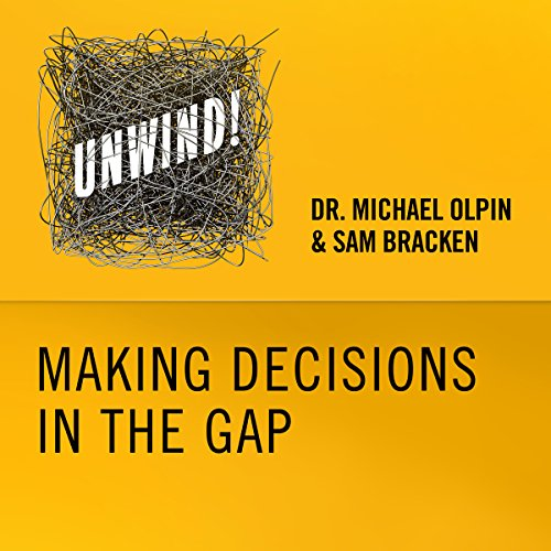 6: Making Decisions in the Gap audiobook cover art