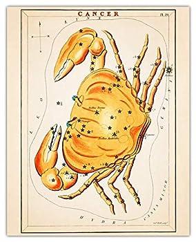 Vintage Cancer Zodiac Sign Wall Art Print -  8x10  Photo Unframed Make Great Room Wall Decor Gift Idea Under $15