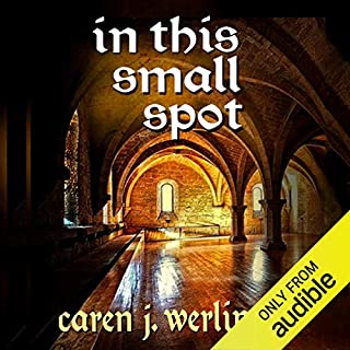 In This Small Spot audiobook cover art
