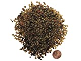 SUPERWURM Regenwurmkokons 1000 Stück, Kompostwürmer, Gartenwürmer, Dendrobena, Würmer, Riesenrotwürmer, Angelwürmer, Futterwürmer, Regenwürmer