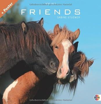 Friends - Pferde 2013. Broschurkalender