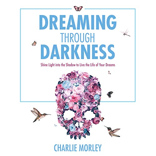 Couverture de Dreaming Through Darkness