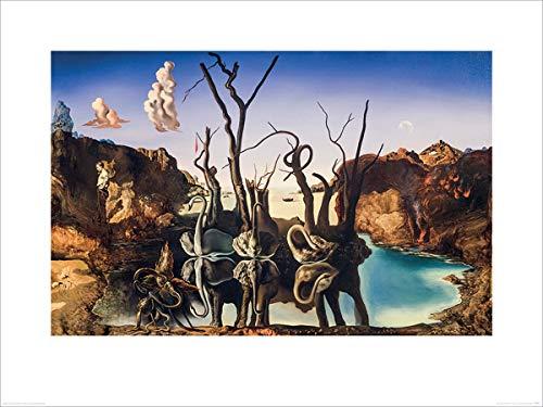 Salvador Dali Laminiert Swans Reflecting Elephants Kunstdruck 80 x 60 cm