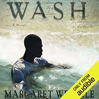 Wash audiobook cover art