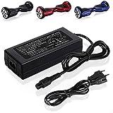 FENSIN 42V 2A Chargeur de Batterie Compatible avec REVOE Balance Monocycle Skateboard Adaptateur Secteur Utilisé pour Charger la Batterie au Lithium-ION 36V