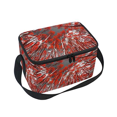 Ahomy Boîte à déjeuner Isotherme Mangrove Forest Sky Sac fourre-Tout Isotherme pour l'extérieur, l'école, Le Bureau, Les boîtes à Repas pour Enfants et Adultes