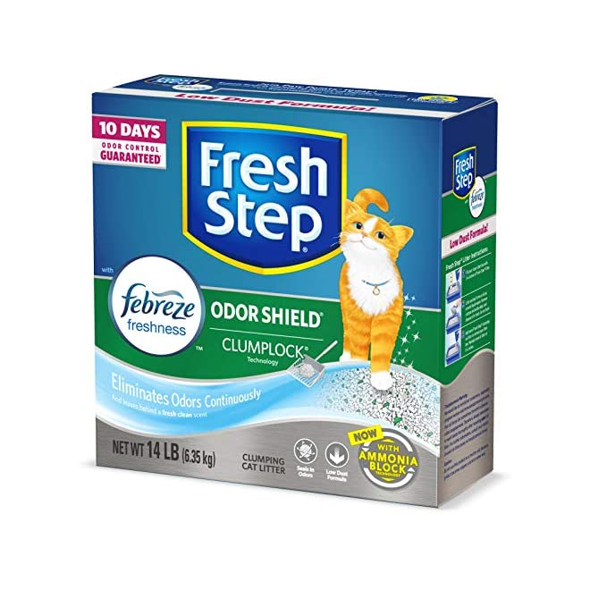 Best Cat Litter related products