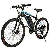 ANCHEER Black Style Adult Electric Bike