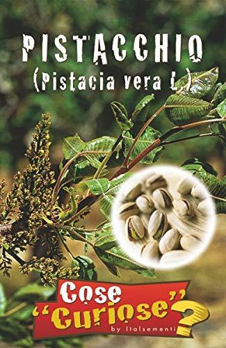 PISTACCHIO (Pistacia vera L.) - SEMI