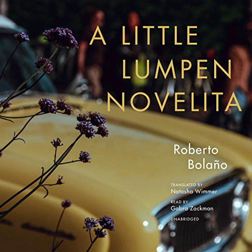 A Little Lumpen Novelita audiobook cover art
