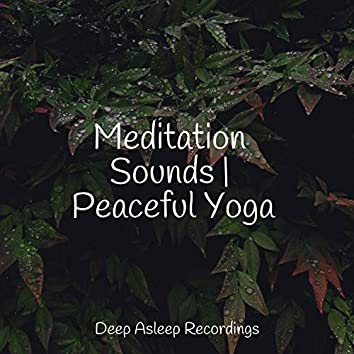 Meditation Sounds | Peaceful Yoga