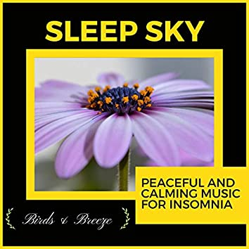 Sleep Sky - Peaceful And Calming Music For Insomnia