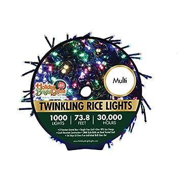 Holiday Bright Lights 1000-Light Multi-Color Cluster Light Rice Set