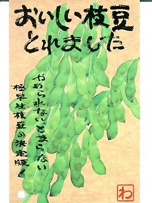 おいしい枝豆とれました 渡辺農事の枝豆の種です