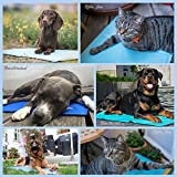 Nosli Kühlmatte Kühldecke Kühlkissen selbstkühlende Decke für Hunde / Sea blue L - 8