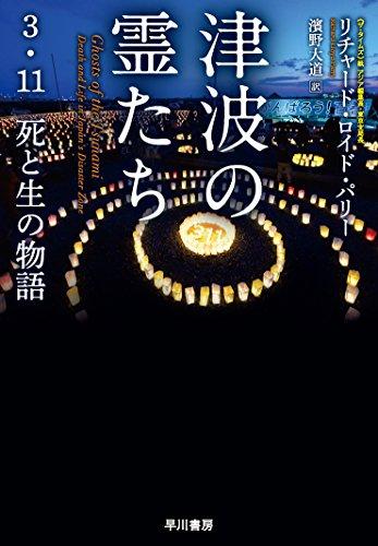 津波の霊たちーー3・11 死と生の物語の詳細を見る