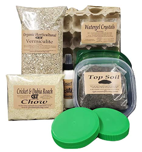 Cricket Colony Starter Kit for Feeder Crickets- 6-Egg Flats, Vermiculite, Top Soil, Screen, 1/2 LB Feed/ Food Sample, 1- Packet of Water gel, Spray Bottle, Container, and 2 Lids (Cricket Starter Kit)