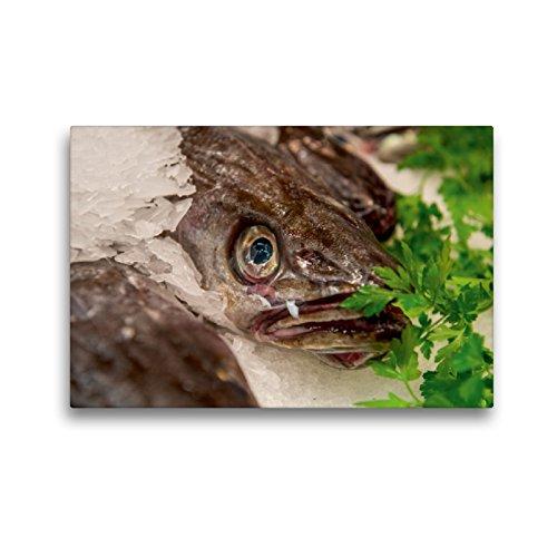 Premium Textil-Leinwand 45 x 30 cm Quer-Format Hechtdorsch | Wandbild, HD-Bild auf Keilrahmen, Fertigbild auf hochwertigem Vlies, Leinwanddruck von Ingo Gerlach