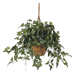 Nearly Natural English Ivy Basket Green 1 Artificial Hanging Plant, 36″ x 36″ x 26″