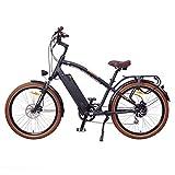 Zoom IMG-1 ncm miami 26 bicicletta elettrica
