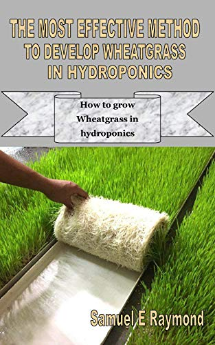 THE MOST EFFECTIVE METHOD TO DEVELOP WHEATGRASS IN HYDROPONICS: How to grow Wheatgrass in hydroponics (English Edition)