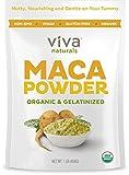 Viva Naturals Organic Maca Powder, Gelatinized for Enhanced Bioavailability, Non-GMO, 1lb Bag