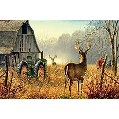 Top Fabric & Non-Slip Rubber Indoor/Outdoor Doormat Door Mats - Nature Trees Fences Birds Fog Mist Deer Barn Farm Animal Floor Mat Rug for Home/Office/Bedroom