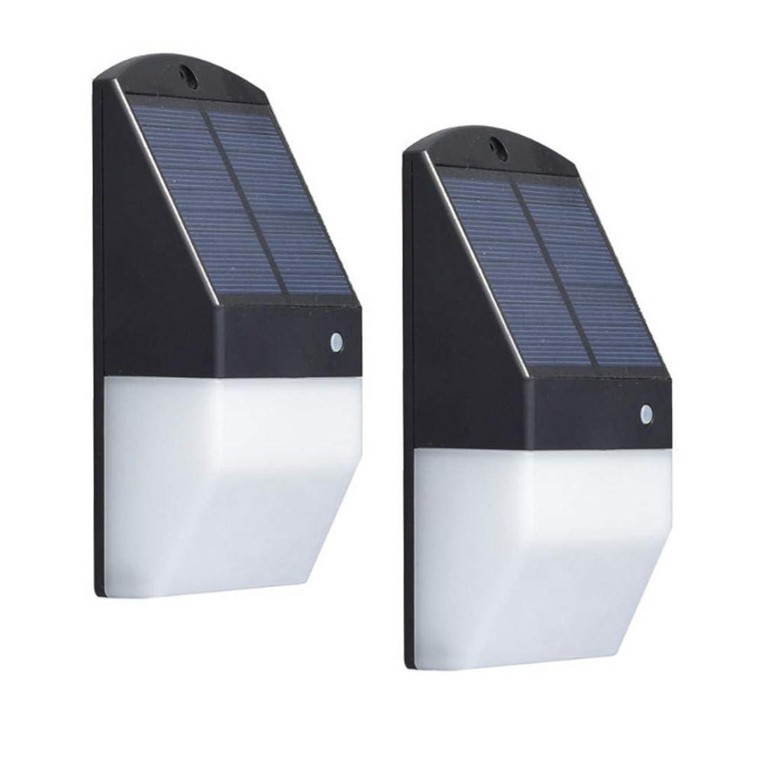 アリ正確オーガニックEsbaybulbs ソーラーライト 光センサーライト レーダーセンサー 人感センサー IP65防水 夜間自動点灯 ホテル 玄関 庭 ガーデンなどに適応 2個セット