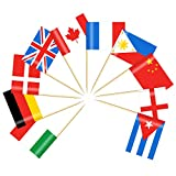 200 Pack International World Stick Flag,Hand Held Small Mini National Pennant Flags Banners On Stick,Party Decorations for Bar,School Sports,Cupcake Cocktail Fruit Flags Decorations