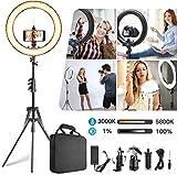 19 Pulgadas Juego de Luces LED en Anillo con Pantalla Ajustado Bi-Color 3000K-5800K, Maquillaje Anillo de luz con el Soporte para el teléfono Video de Youtube de Disparo Retrato Selfie
