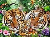 Animal diamante pintura Tigre diamante bordado Animal 5D DIY mosaico de diamantes de imitación decoración del hogar Kit de punto de cruz A8 50x70cm