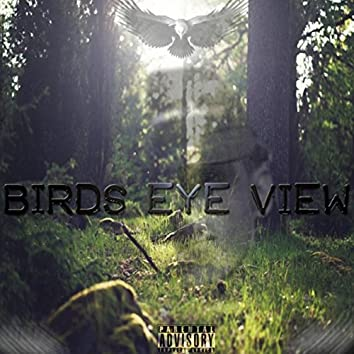 Birds Eye View
