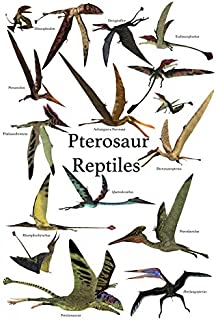 Poster of various flying pterosaur reptiles during the prehistoric age Poster Print by Corey FordStocktrek Images (22 x 34)