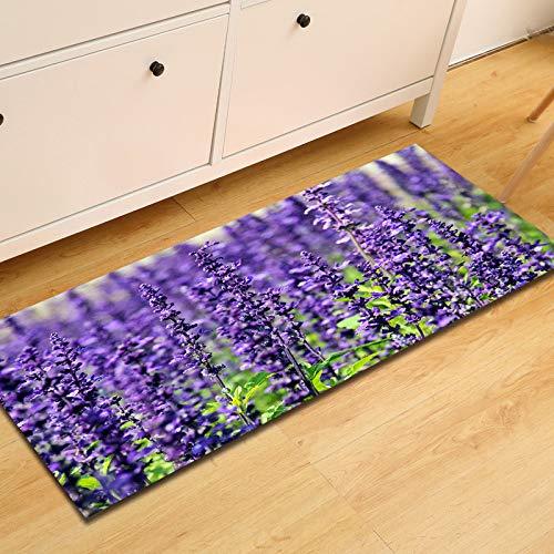 DREAMING-Lavender Absorbent Non-Slip Entry Mat Kitchen Strip Mats Living Room Bedroom Carpet 60 * 90cm