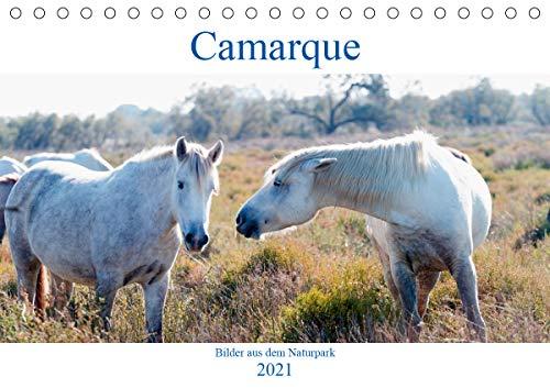 Camarque - Bilder aus dem Naturpark (Tischkalender 2021 DIN A5 quer)