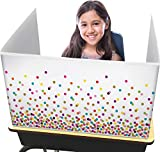 Teacher Created Resources Confetti Classroom Privacy Screen (TCR20345)