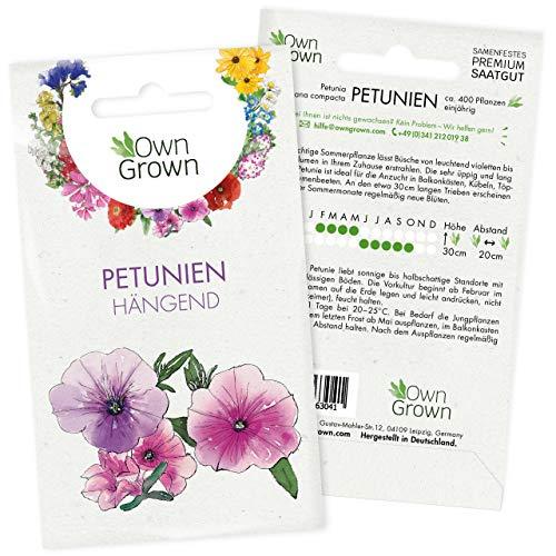 Petunie Samen: Premium Petunien Samen für ca 400 Petunien Pflanzen – Schöne Petunien Blumen Samen Balkon u. Garten Pflanzen – Blumensamen – Petunien Hängend Blumen Saatgut – Blumen für Balkon OwnGrown