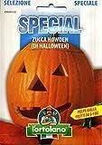 """Tipica selezione americana tradizionalmente utilizzata per divertimento nella """"notte di Halloween"""" il 31 ottobre. Il frutto è globoso del diametro di cm 30 e pesa circa 8-10 Kg, con scorza rossoarancio e polpa gialla di ottimo sapore. Il ciclo è medi..."""