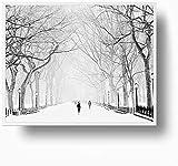 DXYM New York Central Park Winter Poster Kunstdrucke Snowy