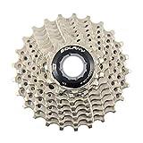 Bolany - Cassette de bicicleta de 9 velocidades de acero para bicicleta de montaña MTB 11-25T Piñón de rueda de volante para Shimano (plata 9 velocidades 11-25T)