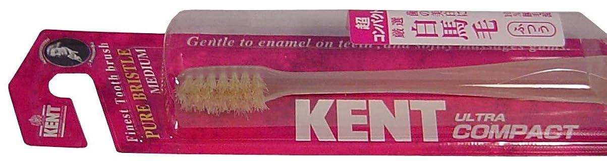 反発するトラックインディカKENT 白馬毛歯ブラシ 超コンパクトヘッド ふつう KNT-0232 ×8個セット