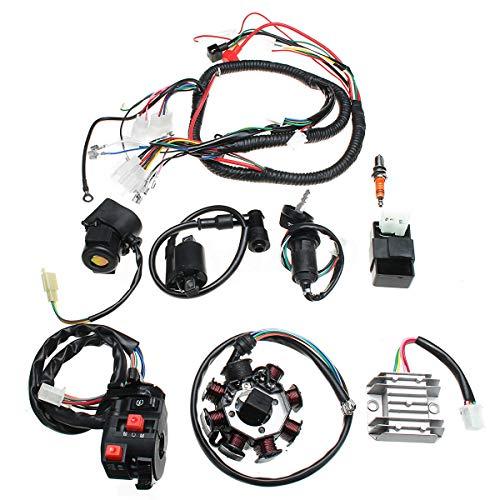 Riloer Kit completo de arnés de cableado de alambre eléctrico bobina de estator CDI ajuste para bici china ATV QUAD CG125-250CC
