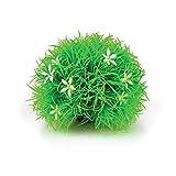 biOrb Topiary Balle avec Daisies pour Aquariophilie