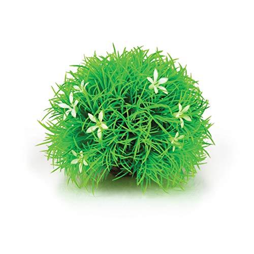 OASE biOrb Gewächsball Gänseblümchen - Aquarium-Deko in Form einer Unterwasser-Pflanze, Zubehör fürs Aquarium-Becken, 360 Grad Modell in Grün