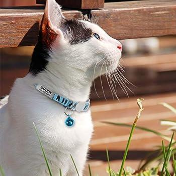 TagME Collier Chat Personnalisable avec Clochette, 1 Pack, Collier Chat Anti Etranglement, Réglable Collier Gravure Medaille Chat pour Chaton, Bleu