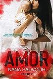 Amor (Portuguese Edition)