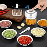 2 Cups Electric Mini Garlic Onion Chopper , 250ml&100ml Wireless Garlic Masher Food Cutter, Handheld Garlic Press Mincer Pepper Chili Vegetable Nuts Meat Grinder, Baby Food Blender