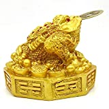 Plusvalue Fengshui Lucky Three Legged Feng Shui Money Frog Toad for Good Luck, Wealth, Prosperity, Success, Happiness (Golden Colour)