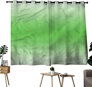Williasm Background Darkening Curtains Grommets Curtain Panels Ombre,Moss Leaf Spring Theme Room/Bedroom W55 x L39